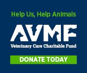 Help us, help animals - AVMF - Veterinary Care Charitable Fund - Donate Today